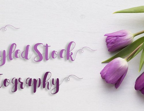 Free Styled Stock Photography